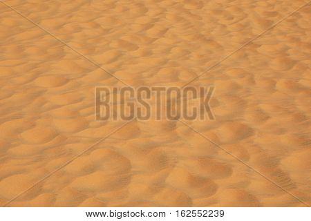Detail of a beautiful desert sand dune
