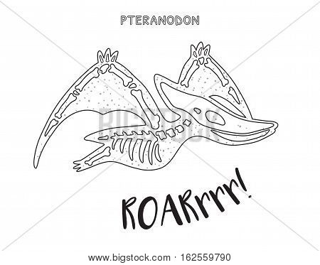 Pteranodon skeleton outline drawing. Fossil of a pteranodon dinosaur skeleton. Coloring book page