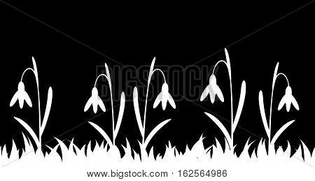 Seamless silhouette grass and flowers. Vector illustration.