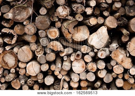 large pile of wooden logs of hard wood for heating in the house