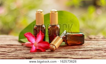 Spa Cosmetics