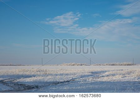 Photo by winter snowbound field with bushes and power line.