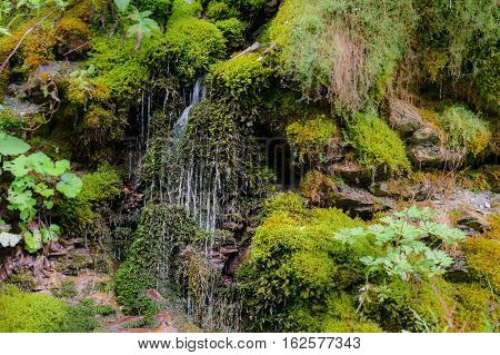 Cascades Of Waterfall Over Rock Ledges. Nature Landscape Of Waterfall Cascade With Beautiful Green S