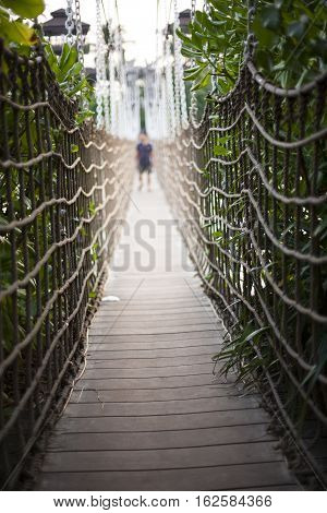 Cable bridge to the jungle in tropics