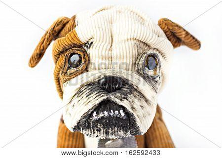 Soft toy - a dog an English bulldog. isolate