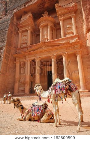 PETRA, JORDAN: The Treasury (Al Khazneh) with camels in the foreground