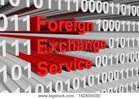 Foreign Exchange Service in the form of binary code, 3D illustration
