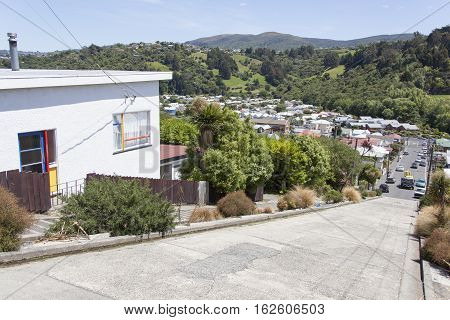 The view from the top of Baldwin Street the steepest street in the world (Dunedin New Zealand).