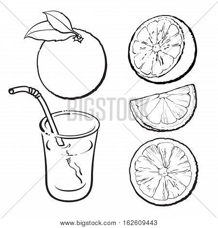 Oranges and a glass of freshly squeezed juice, sketch style vector illustration isolated on white background. Set of black and white hand drawings of whole, half and sliced ripe oranges, juice, segment