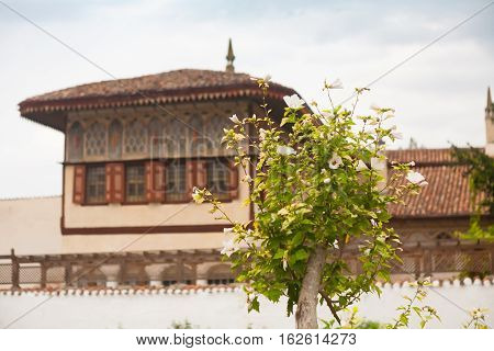 Blossoming tree with white flowers on a background of the Khan's palace. Crimean Tatars. Crimea. Bakhchisaray.