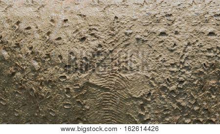 bubble on the Pumice texture background, concrete texture