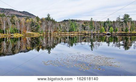 Adirondack Lake Water Reflections No. 24