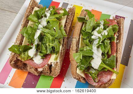 Sandwich on a serving tray in studio