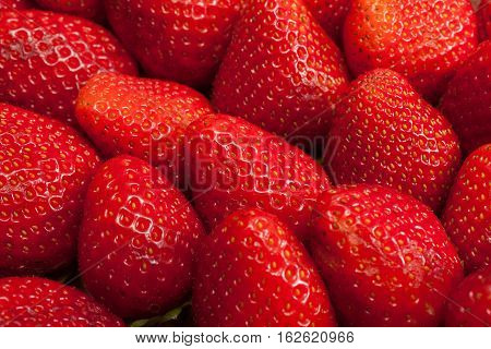 Background from freshly harvested strawberries in studio