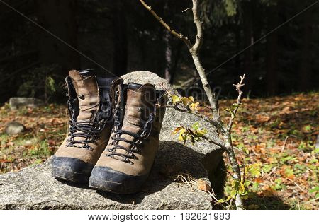 Touristic shoes on a rock in a wood