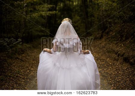 Photo of the bride from the back wedding dress on a girl the bride in the forest the princess in the forest wedding gown from the back on woman hem dress veil wedding photo shoot hairstyle