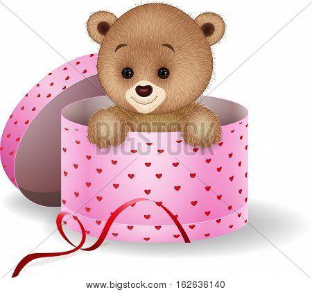Vector illustration of Cartoon teddy bear in the gift box