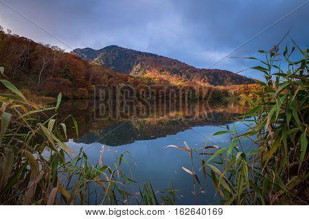 Maruoike pond on Mt.Shigakogen, Nagano province, Japan.