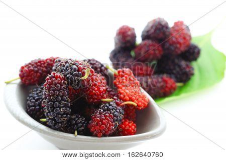 Group of ripe mulberries in white bowl over white background.