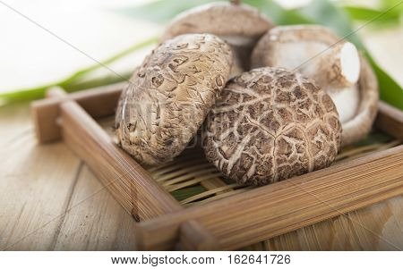 fresh Shiitake mushroom on a bamboo basket