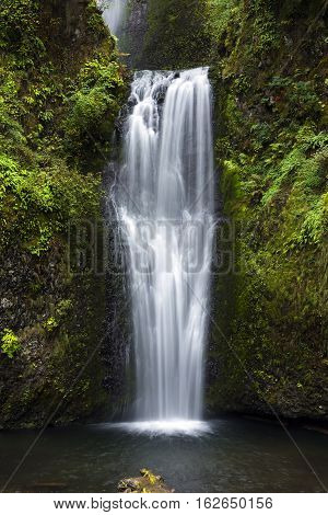 Lower Multnomah Falls, Columbia River Gorge, Oregon