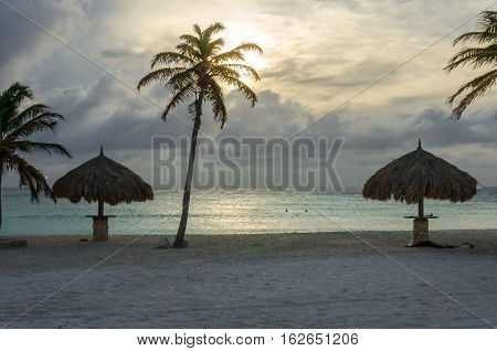 Rest Area With Palm Trees By The Beach In Aruba