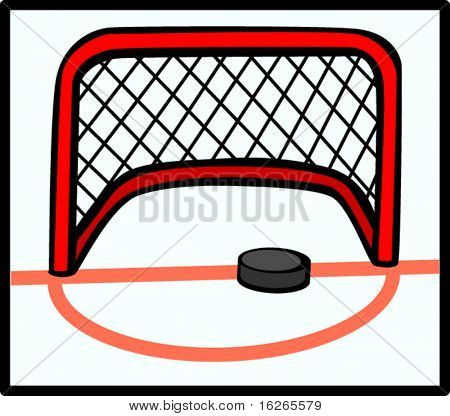 hockey puck and goal net
