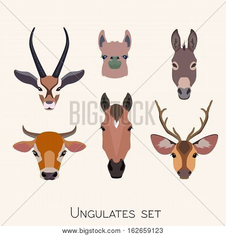 Vector ungulates cloven hoofed animals head set. Lama, deer antelope, donkey, horse cow bull illustration isolated. Poster banner print advertisement, web design element object. Flat, cartoon style