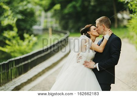 Bride kisses a groom while airing on the street