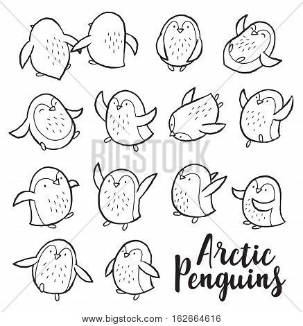 Hand drawn outline set of arctic penguins. Cute characters in cartoon style. Vector set. Coloring book page