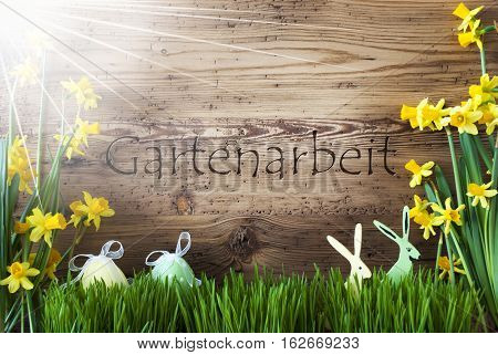 Wooden Background With German Text Gartenarbeit Means Gardening. Easter Decoration Like Easter Eggs And Easter Bunny. Sunny Yellow Spring Flower Narcisssus With Gras. Card For Seasons Greetings
