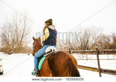 Female Rider And Horse In The Open Air. Portrait Of A Beautiful Young Woman With Her Stallion, Outdo