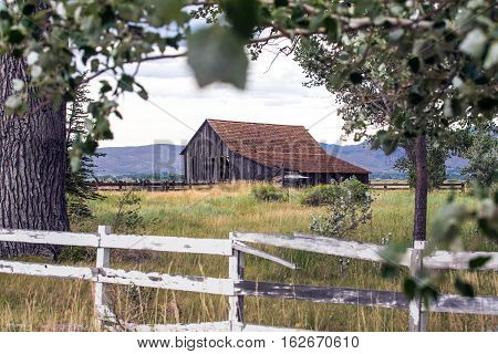 Old Falling Down Barn In A Field, Framed By Trees And A Fence
