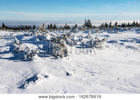 Winter On Mountains Ridge