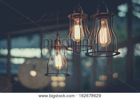 Beautiful Light Bulb Incandescent Hanging Decorated Interior Room