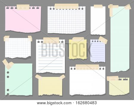 Paper torn page notes. Blank notepad pages with adhesive tape pieces vector illustration. Paper glued to wall with tape
