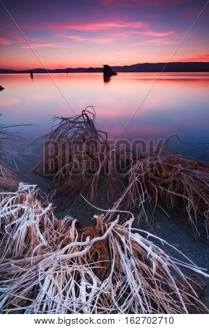 Mono Lake is a lake with very high salt content in California.