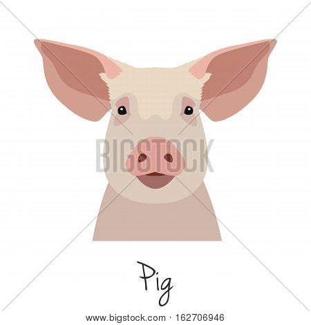 vector pig head isolated. Flat style, cartoon object. poster banner print advertising, design element. farm animal