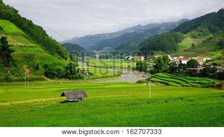 Landscape Of Terraced Rice Fields In Vietnam