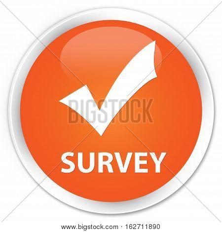 Survey (validate Icon) Premium Orange Round Button