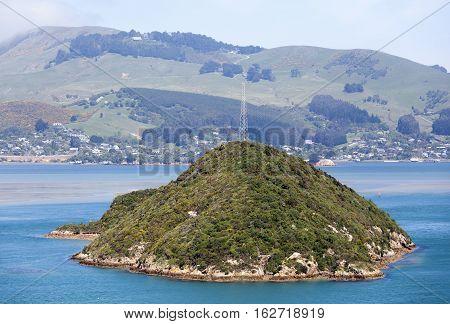 The view of uninhabited Goat Island-Rakiriri from Port Chalmers suburb (Dunedin New Zealand).