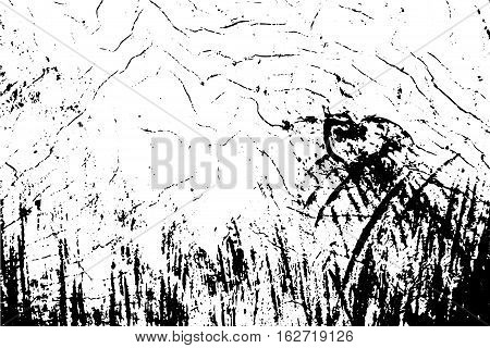 Cracked wood texture vector illustration. Black and white background with natural tree surface ornament. Rough wood cut monochrome image. Old wood board shabby backdrop. Timber with cracks structure