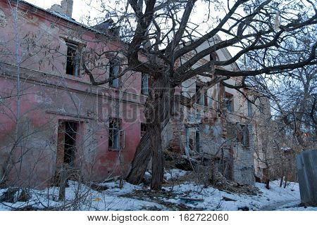 Intertwined old trees on the background of an abandoned dilapidated old mansion of Gardenin, Voronezh, Russia