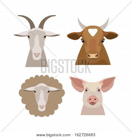Vector flat cartoon cow, bull calf pig goat sheep head isolated. Animals of a farm. poster banner, print advertisement, web design element. Domestic animals. livestock.