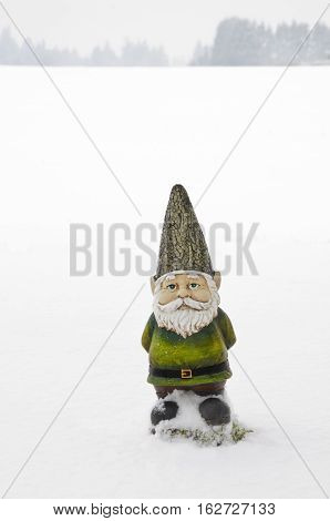Gnome standing in country field covered in snow with trees faded in the background