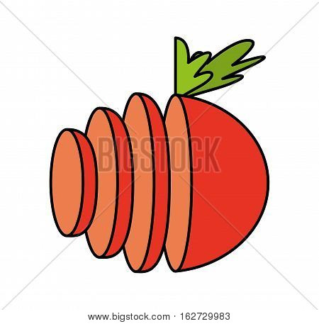 tomato fresh vegetable isolated icon vector illustration design