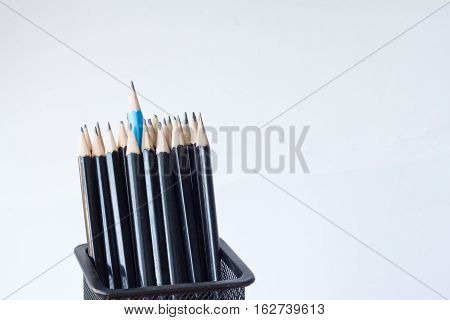Pencils In A Pencil Case On Isolated