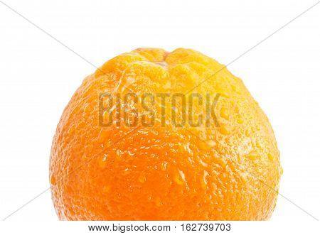 orange, resh, isolated, orange, citrus, white, whole, organic, fruit,