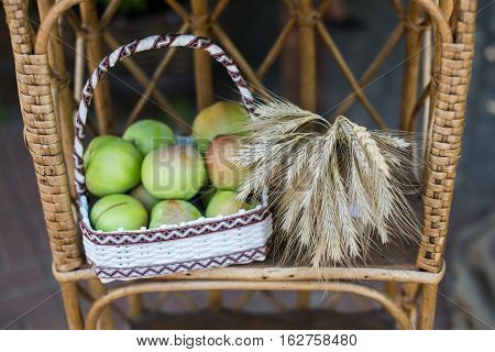 sheaf of wheat green apples lying on a chair