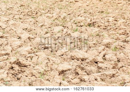 Ploughed field preparation before sowing, agriculture concept.